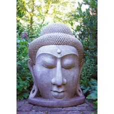 GRAND BUDDHA HEAD ©